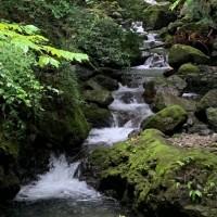 千石谷渓流